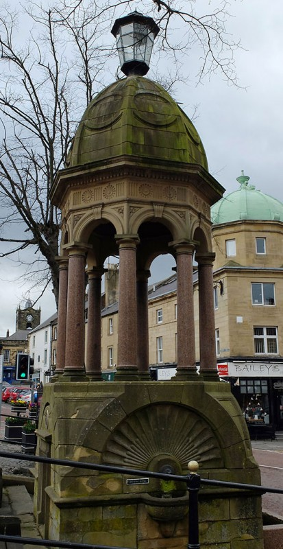 The pant in Alnwick