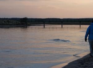 estuary-sunset2
