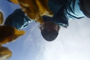 Lisa from below