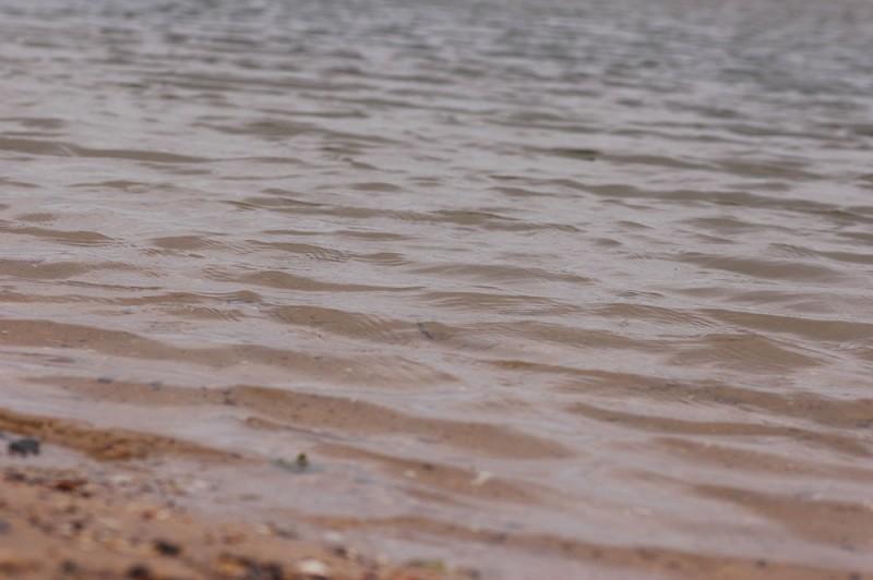 estuary-water